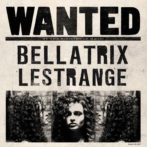 The Art Printorium Ltd Blahopřání Harry Potter 3D - Bellatrix Lestrange Wanted