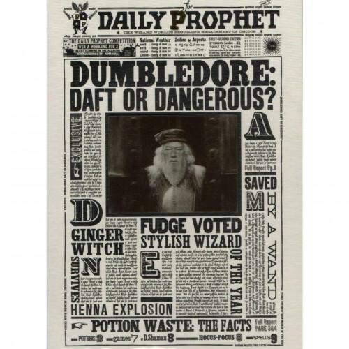 The Art Printorium Ltd Blahopřání Harry Potter 3D - Brumbál: Zmatený, nebo nebezpečný?