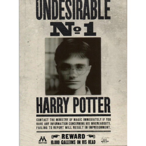 The Art Printorium Ltd Blahopřání Harry Potter 3D - Ministry Undesirable No.1